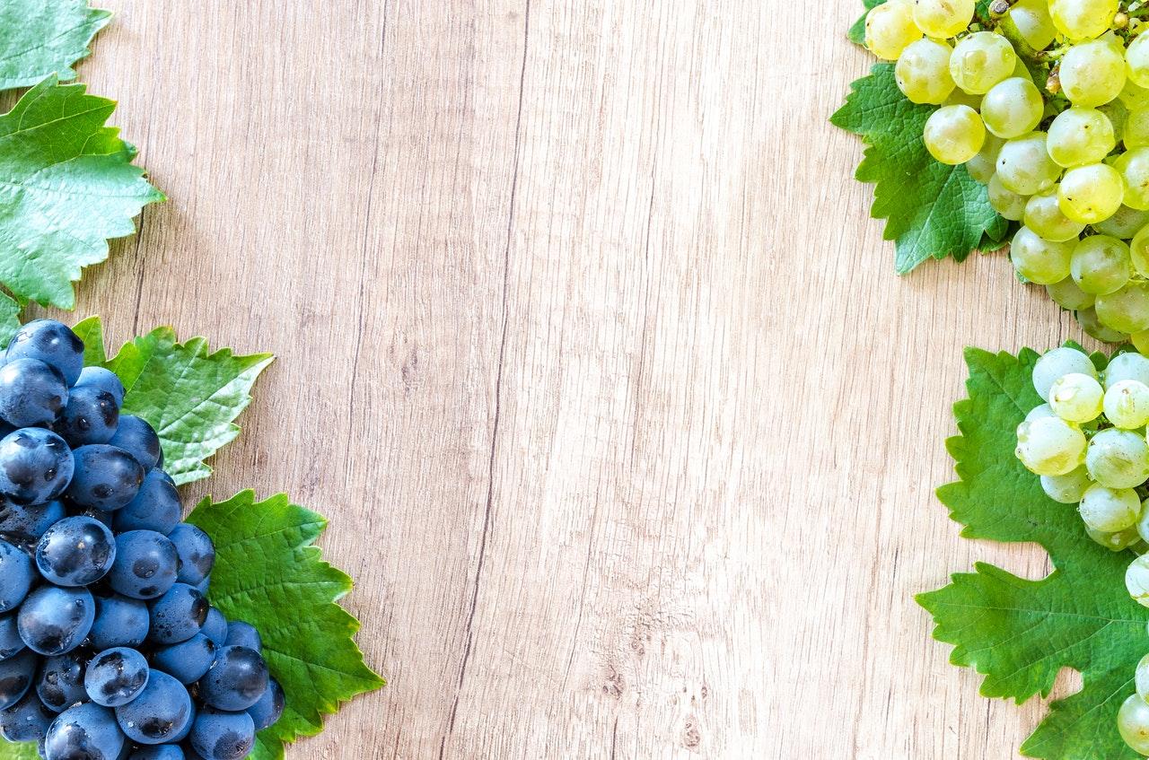 La viticulture en France